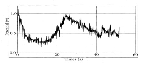 Figure 1. April 6, 2009 near noon. Graph of over the hill response  to about a 0.75 sec hit to a salt filled sample in the lab